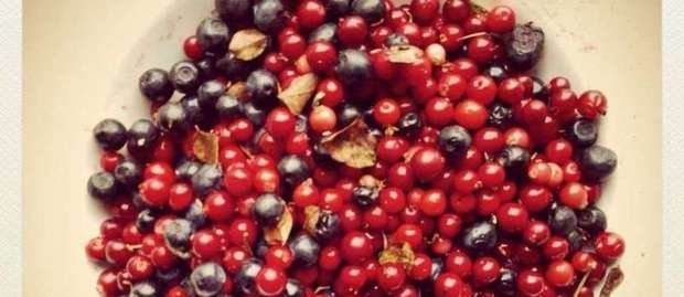 Forest Berry Pie